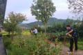 2021년 가을 정원소독
